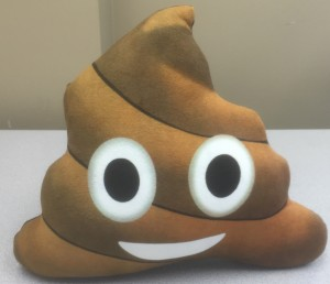 "I saw it, and I had to have it.  A ""Poop Emoji"" pillow - 'cause I'm mature like that!"