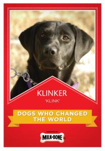 Klink_1