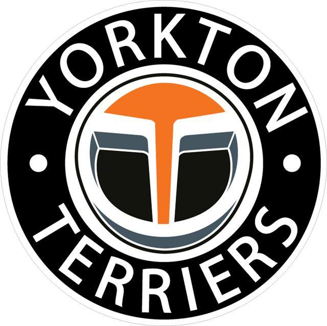Win Tickets To The Next Yorkton Terriers Game Fox Fm More Hits